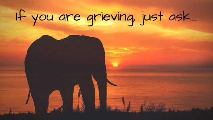If You Are Grieving, Ask For Your Purple Elephant… Go Ahead, Try It!